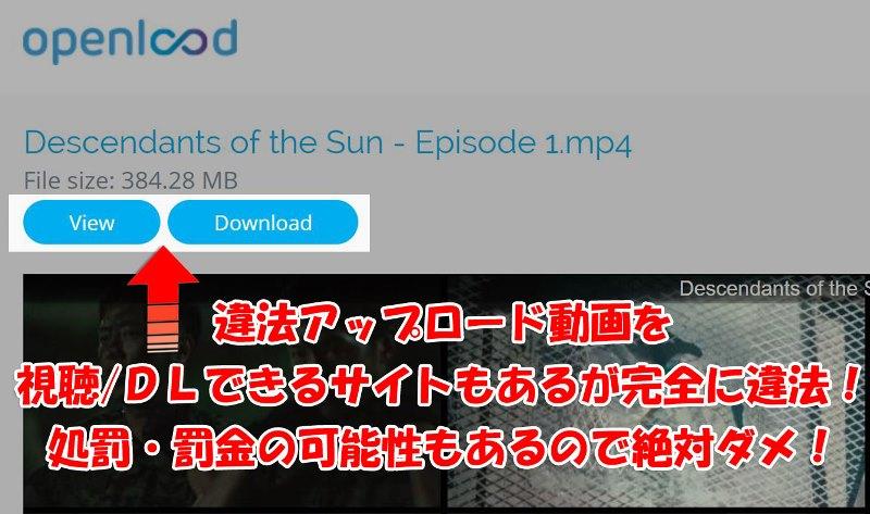 違法アップロード動画を視聴DLできるサイトもあるが完全に違法!処罰・罰金の可能性もあるので絶対ダメ!